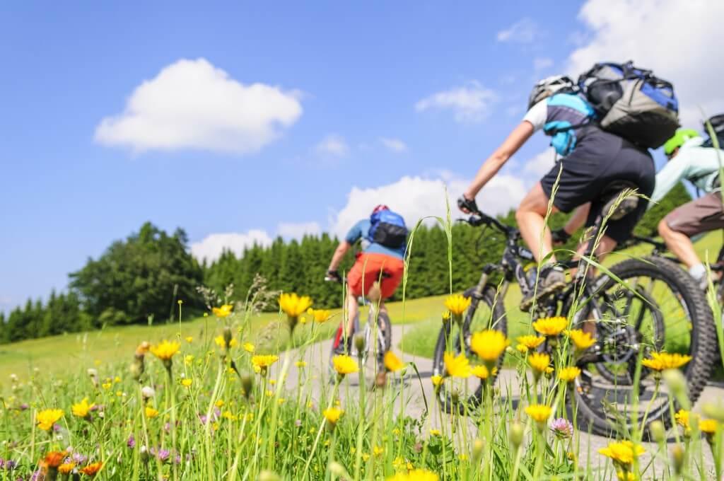 Mit dem Mountainbike durch die Natur und Fahrradfreunde finden