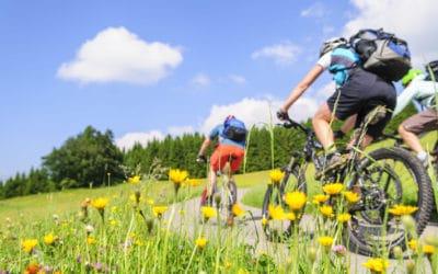 Fahrradfreunde