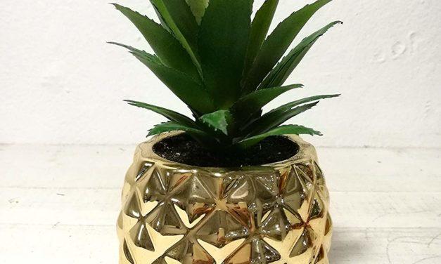 Das hat Stil – Goldene Ananas